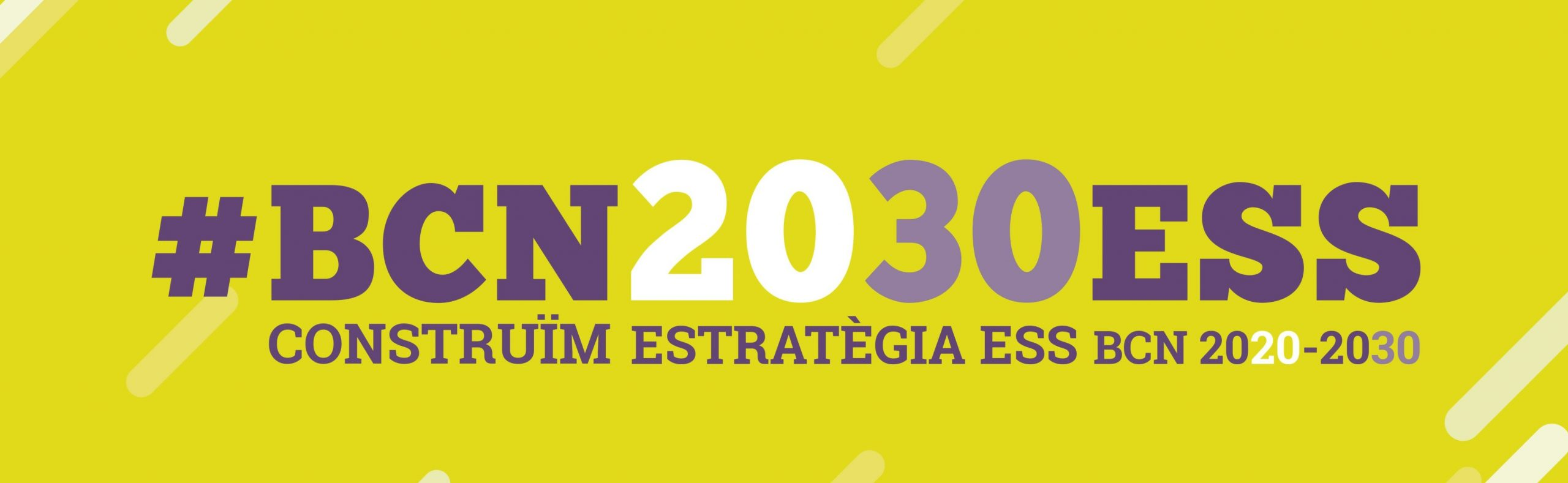 Estratègia_ESS_2030